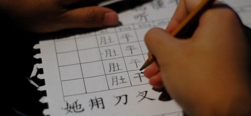 Ingyenes kínai nyelvtanfolyam indul a Miskolci Egyetemen