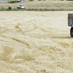 Magyar Nemzet: Megfojtja a falvakat a kormány intézkedése