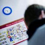 Ingyenes nyelvtanfolyamok: elbukhat a program a nagy sietség miatt?