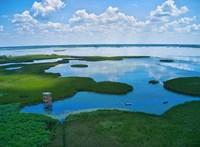 Csak a vízen lehet megközelíteni a Tisza-tó két új kilátóját