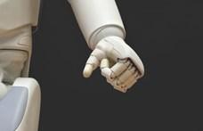 Tesztet csinál és a maszkhordásra figyelmeztet egy új, egyiptomi robot