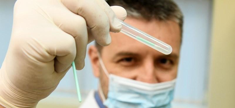 """""""Mindenki DNS-ében ott van, mitől tud lefogyni"""" – már nálunk is elérhető az életmódgenetika"""