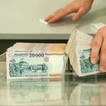 Idén is fürdőzhetnek Matolcsy-pénzben a vállalkozások