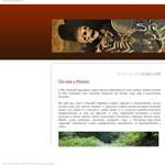 Honfoglalás kori sírok kerültek elő Pest megyében