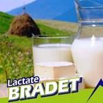 Sajtriadó: több mint húsz tonna tejterméket hívtak vissza