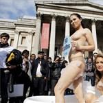 Meztelen Playboy nyuszik tüntettek a víz világnapján - fotók