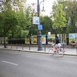 Budapesten 55 százalékkal több a kerékpáros, mint tavaly