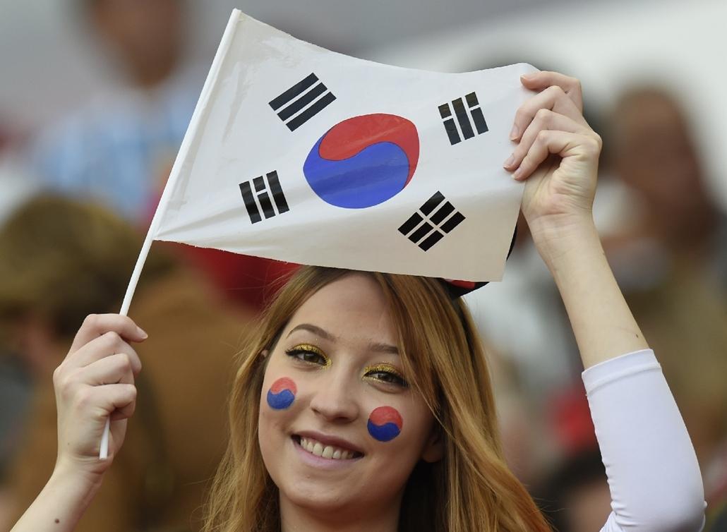 afp.14.06.22. - Porto Alegre, B.RAZ: 32.meccs - korea-algéria-korea meccs - vb14meccs, foci-vb 2014, vb14tömeg, vb14szurkoló