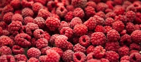 A következő tanévben is kapnak majd gyümölcsöt és zöldséget a diákok