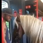 Lovával együtt indult vonatozni egy osztrák