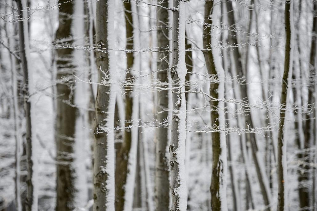 mti.15.03.12. - Kékestető: hó a Mátrában - havazás, hóesés, Mátra