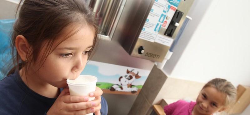 Átalakítaná az iskolatejprogramot egy szülői szervezet