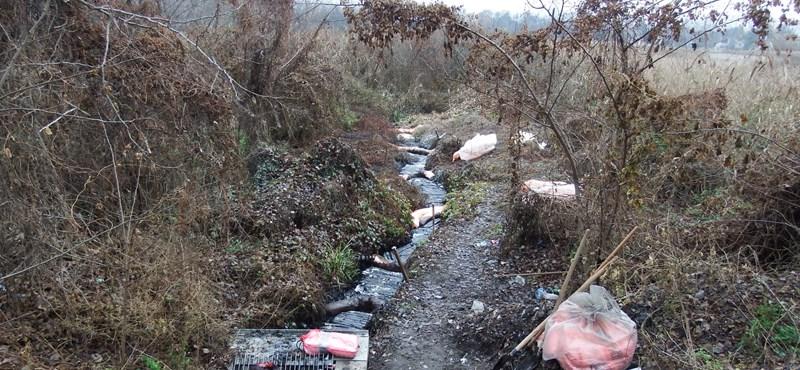 Szigetszentmiklósi olajszennyezés: már több mint 10 ezer liter fáradt olajat szivattyúztak le
