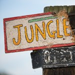 """""""Ma vége a Dzsungelnek"""" - kiürült a calais-i tábor, buldózerek jöttek"""