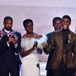 """A Fekete párduc kapta a """"kis Oscarnak"""" számító SAG-díjat"""
