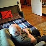 Fotó: időseket segítő robot sürög-forog a budapesti lakásban