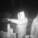 Idős nő kerítéséből loptak deszkákat, vadkamera buktatta le őket