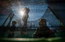 Hintalovon Alapítvány: Ne posztoljunk a gyerekről félmeztelen képeket, mert pedofil oldalak fogják lehalászni
