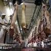 Komolyan meg fog drágulni a sertéshús