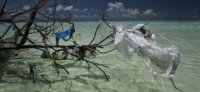 ¿Playa sin plástico?  Te mostraremos si eso es posible