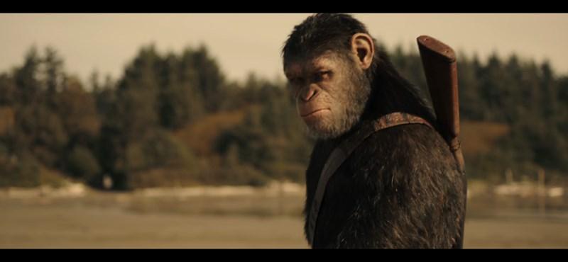 Woody Harrelson dühös: itt A majmok bolygójának trailere