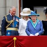 Mit lehet kiolvasni Erzsébet királynő nyilatkozatából?