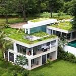 Pazar zöldtetős villa a dzsungel szélén