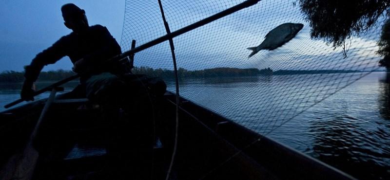 Véget ért a folyami halászat az országban, bajban a szakma