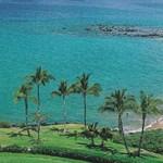 Üveg fenekű medence bátor fürdőzőknek Honoluluban