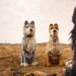 Wes Anderson gyönyörű kutyás animációval tér vissza – előzetes
