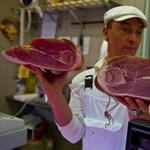 FAO: évente egymilliárd tonna élelmiszer romlik meg a világon