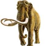A mamutoknak 37-38 fokos volt a testhőmérséklete