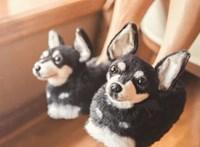 Kutyamamusz az új divat, ráadásul az állatokat is támogatja vele