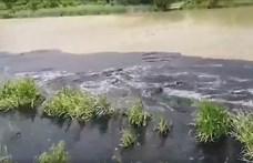 Szlovéniából is szennyvíziszap jön Magyarországra