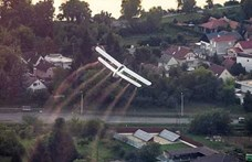 Kemenesi: A szúnyogok légi kémiai gyérítése káros az ökoszisztémára
