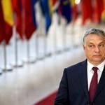 Orbán azért áll vesztésre Sargentinivel szemben, mert nem tud dönteni a jobbközép és a populisták közt