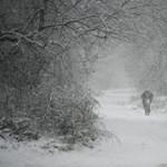 Itt van a tél, itt van újra - mi várható a jövő héten?