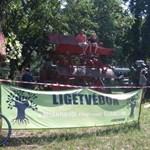 A hajókereket és a repülőt már nem engedték: Akcióban a Ligetvédők