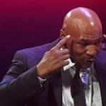 Kannabiszfarmot és marihuánasulit nyit Mike Tyson