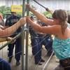 Felfüggesztettet kapott a rendőr, aki megrugdosta a ligetvédők sátrát