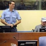 Mladicsot orosz sztárügyvéd védi
