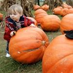 Rémálom Halloweenkor: tökkel jön a gyerek