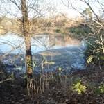 Ólomsörét és rákkeltő anyag kerülhetett a védett Holt-Tiszába