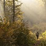 4 tipp, hogyan vészeld át az őszi tanév depresszióját