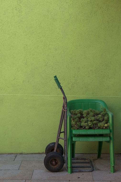 NE használd_! - Photographer of the Year 2014 - Legjbb fiatal fényképész - Burano, Olaszország - Színes falak előtt - tpoty