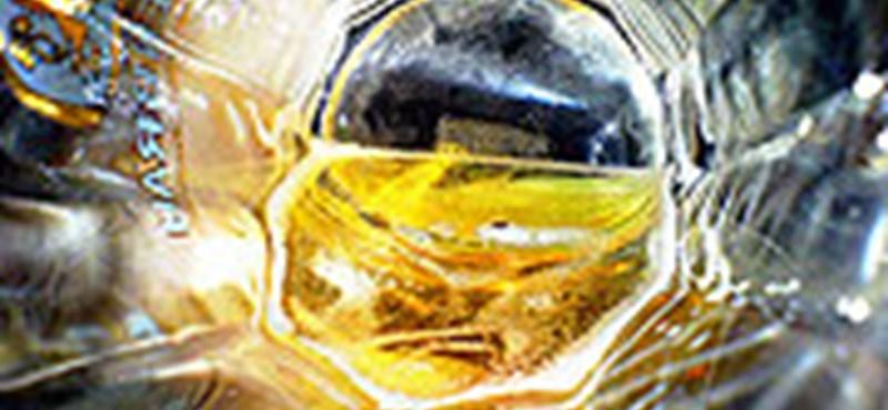 Különleges sörök élvezete Győrben