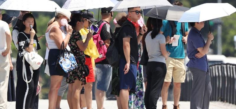 Több száz halálesetet okozott a tavalyi hőség Németországban