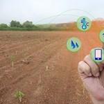 Ezek a nagy dolgok: 6 érdekes IoT fejlesztés
