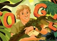 Miért került ma a krokodilvadász Steve Irwin a Google főoldalára?