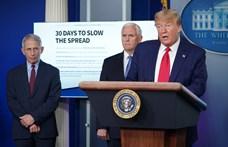 Fájdalmas hetek várnak az amerikaiakra Trump szerint